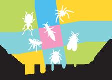 Insektenschutz Klumpp